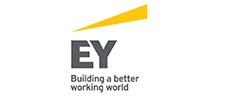 CWSP Partner logo - EY